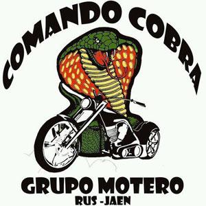 Logo-GM-Comando-Cobra