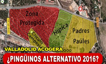 Valladolid acogerá... ¿Pingüinos Alternativo 2016?