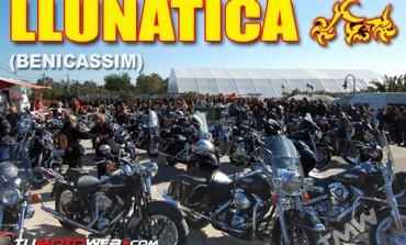 Concentración Custom Harley Internacional Llunatica